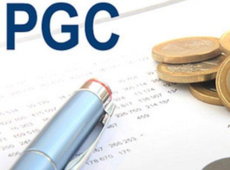 cuentas plan general contable para imprimir herstal
